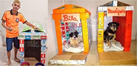 Vídeo: Dançarino de Laranjal Paulista constrói casinhas para cães carentes produzidas com caixas de leite