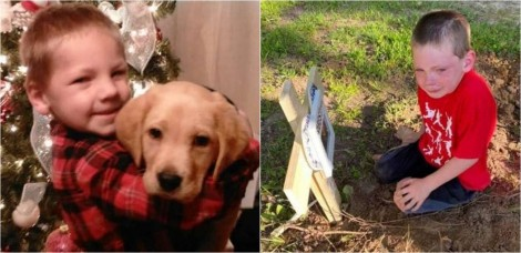 Menino chora ao se despedir de seu cãozinho vítima de ato criminoso
