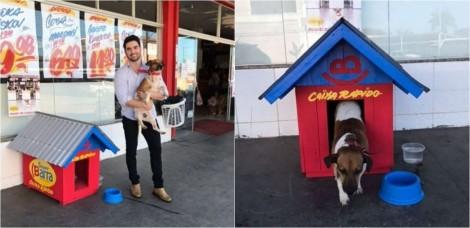 Dono de supermercado adota cão de rua que ficava rondando local e boa ação viraliza na web