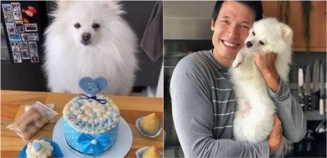 Leo Young, vencedor do MasterChef 2016, comemora aniversário de seu cachorro com banquete especial