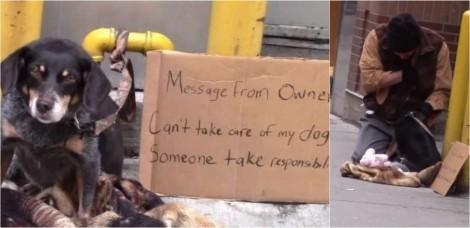 Teste social: Morador de rua é a única pessoa que para ajudar cachorrinho abandonado na rua e vídeo viraliza