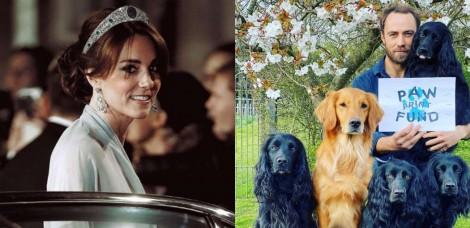 Irmão de Kate Middleton conta como sua cachorra cocker spaniel o ajudou a vencer a depressão