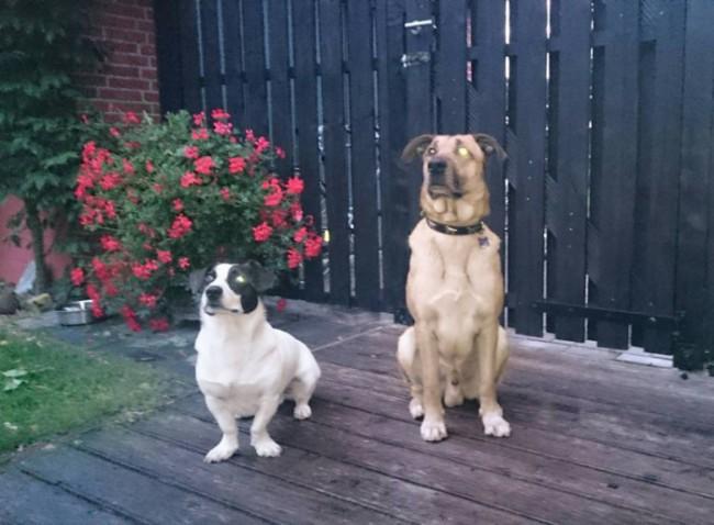 Rubio com um de seus novos irmãozinhos
