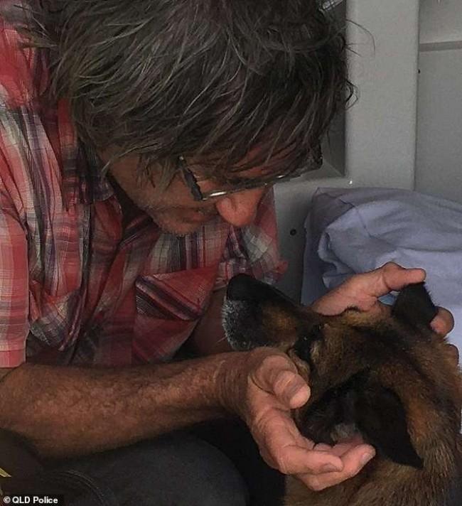 Foto: Reprodução Cachorros Adorables