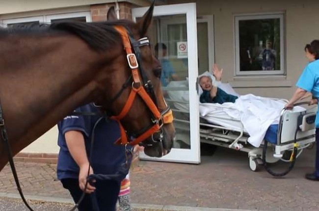 Foto: Reprodução Youtube / NorthDevon Hospice