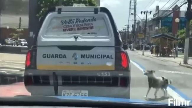 Foto: Rodrigo Viana/Polícia Militar