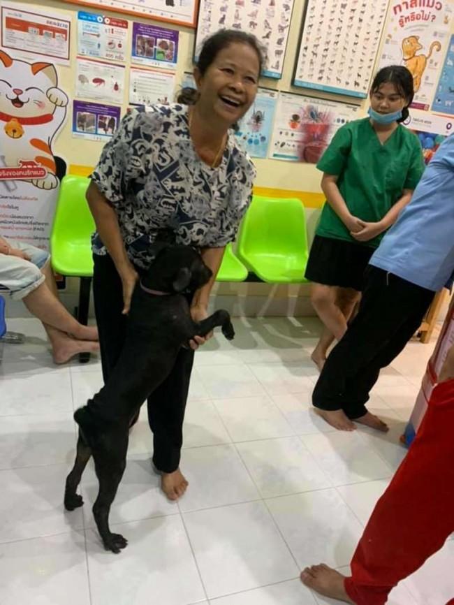 Foto: Facebook / Putahracsa Veterinary Clinic