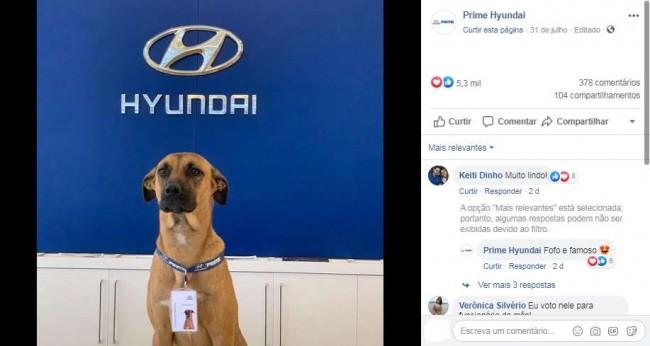 Foto: Facebook / Prime Hyundai