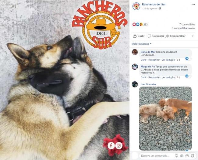 Foto: Facebook / Rancheros del Sur