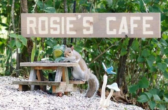 Foto: Facebook / Rosies Café